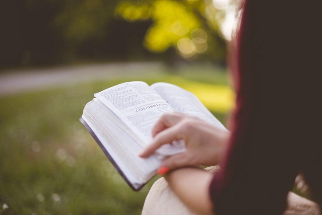 lectura comprensiva